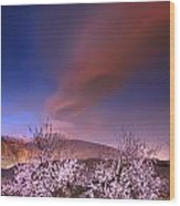 Lenticular Clouds Over Almond Trees Wood Print