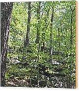 Leominster Massachusetts State Reservation Wood Print