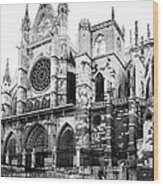 Leon Cathedral Wood Print