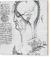 Leonardo: Brain, C1490 Wood Print