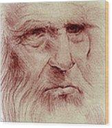 Leonardo Wood Print