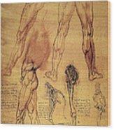 Leonardo: Legs, C1508 Wood Print