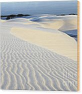 Leoncois Maranhenses Beauty Of Sand Wood Print