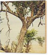 Leopard Eating His Victim On A Tree In Tanzania Wood Print
