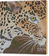Leopard In Botswana Wood Print