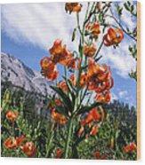 Leopard Lilies Below Lassen Peak Wood Print