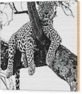 Leopard - Panthera Pardus. Leopard Will Wood Print