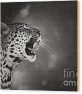 Leopard Portrait Wood Print