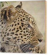 Leopard Zimbabwe Wood Print