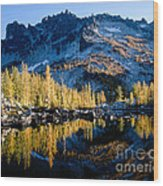 Leprechaun Lake Larch Trees Wood Print
