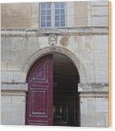 Les Invalides - Paris France - 01132 Wood Print by DC Photographer