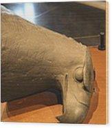Les Invalides - Paris France - 011356 Wood Print by DC Photographer
