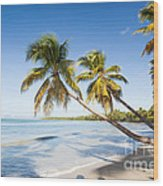 Les Salines Beach Wood Print