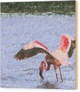 Lesser Flamingo Filter Feeding Lake Nakuru Kenya Wood Print