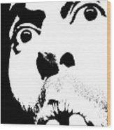 Selfie Circa 2005 Wood Print
