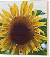 Let Me Bee Wood Print