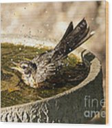 Let The Water Fly Wood Print