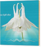 Let Your Light Shine Wood Print by Gill Billington