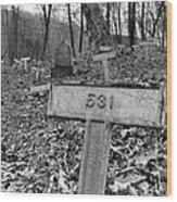 Letchworth Hidden Deaths Wood Print