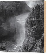 Letchworth In Winter Wood Print