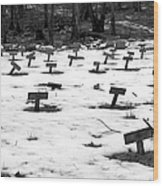 Letchworth Village Cemetery Wood Print