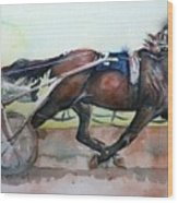 Racehorse Painting In Watercolor Let's Roll Wood Print