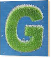 letter G underwater with bubbles  Wood Print