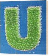 letter U underwater with bubbles Wood Print