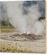 Letting Off Steam - Yellowstone Wood Print