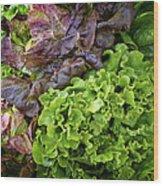 Lettuce Medley Wood Print