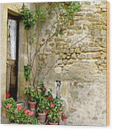 Levroux France Entrance Wood Print