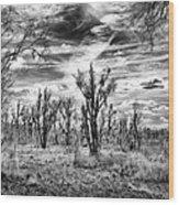 Levy Lake Wood Print
