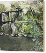Lewis Creek Trail Wood Print