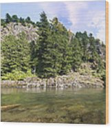 Lewis River Landscape Wood Print