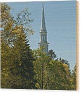 Lexington Battlefield  Wood Print