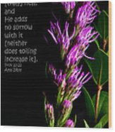 Liatris On Black II Wood Print