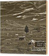Liberty Cemetery I Sepia-toned Wood Print