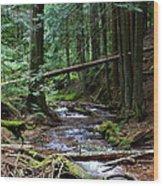 Liberty Creek 2014 #5 Wood Print