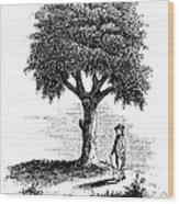 Liberty Tree, 1765 Wood Print