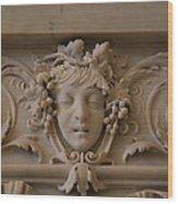 Library Of Congress - Washington Dc - 01136 Wood Print