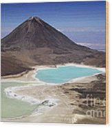 Licancabur Volcano And Laguna Verde Wood Print