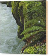 Lichen Covered Rocks With Stream In Oregon Wood Print