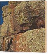 Lichen On Boulders Wood Print