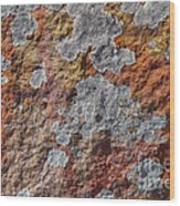 Lichen On Sandstone Wood Print