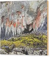 Lichen On Sea Beach Rock Wood Print