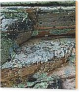 Lichen On The Rocks-1 Wood Print