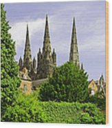 Lichfield Cathedral From The Garden Wood Print