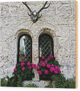 Lichtenstein Castle Windows Wall And Antlers - Germany Wood Print