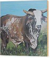 Life Between Rodeos Wood Print