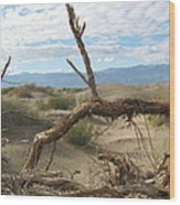 Life In The Desert Wood Print